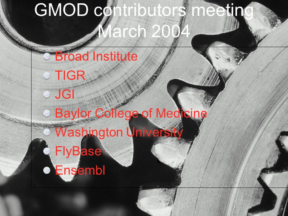 Broad Institute TIGR JGI Baylor College of Medicine Washington University FlyBase Ensembl GMOD contributors meeting March 2004
