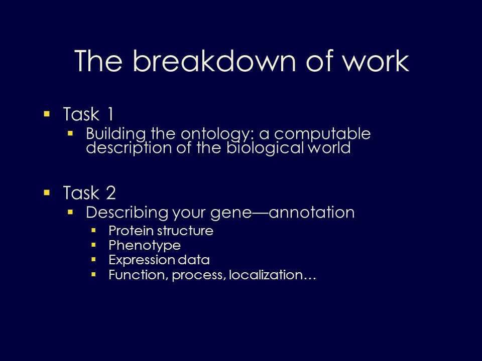 The breakdown of work Task 1 Building the ontology: a computable description of the biological world Task 2 Describing your geneannotation Protein structure Phenotype Expression data Function, process, localization…