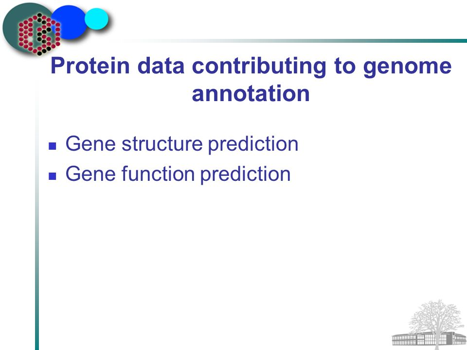 Protein data contributing to genome annotation Gene structure prediction Gene function prediction