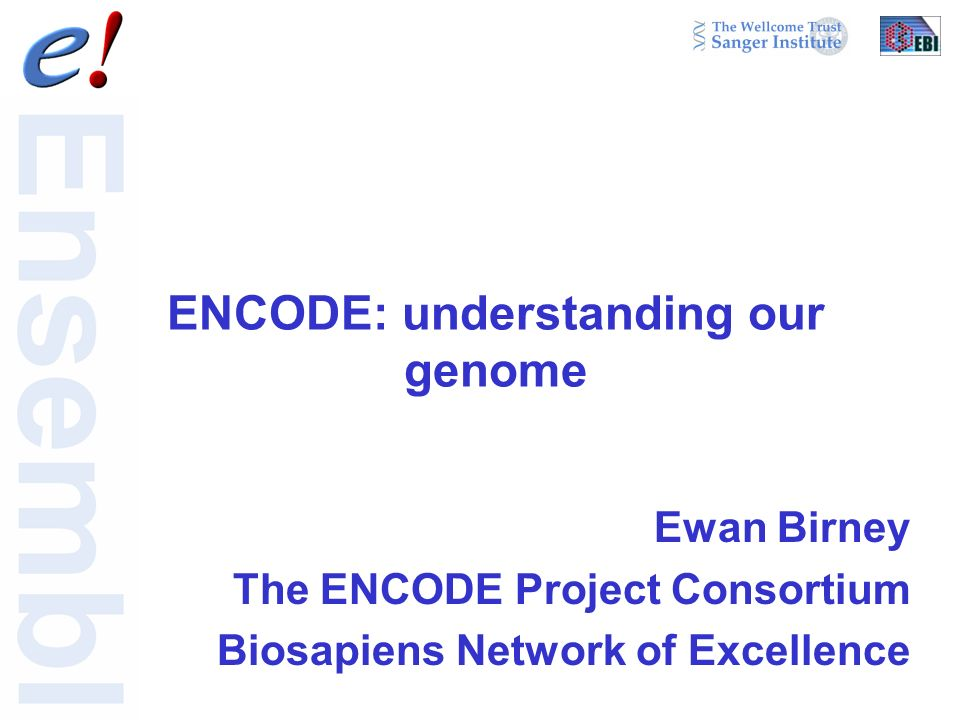 ENCODE: understanding our genome Ewan Birney The ENCODE Project Consortium Biosapiens Network of Excellence