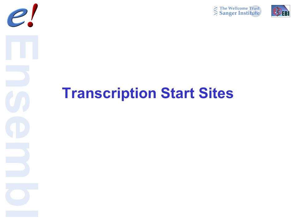 Transcription Start Sites