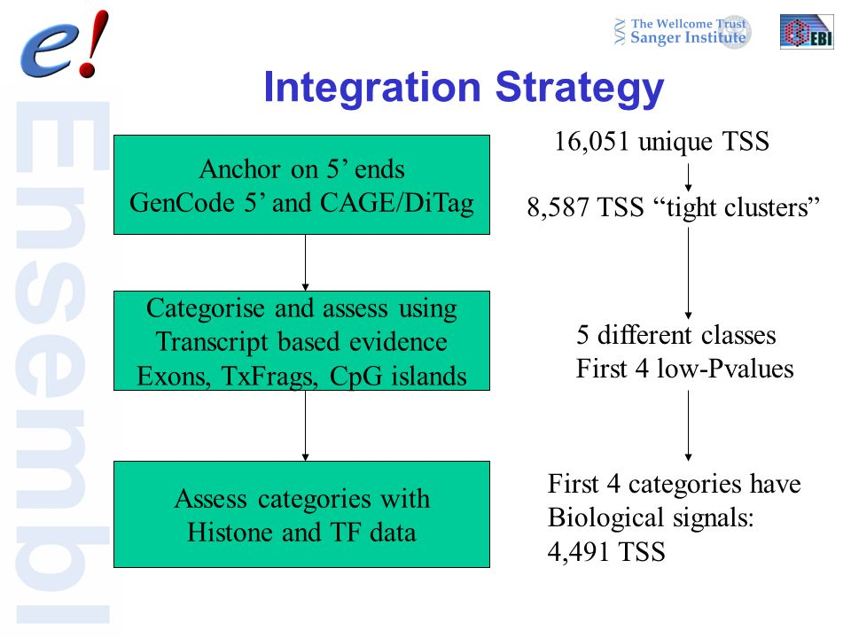 Integration Strategy Anchor on 5 ends GenCode 5 and CAGE/DiTag Categorise and assess using Transcript based evidence Exons, TxFrags, CpG islands Assess categories with Histone and TF data 16,051 unique TSS 8,587 TSS tight clusters 5 different classes First 4 low-Pvalues First 4 categories have Biological signals: 4,491 TSS