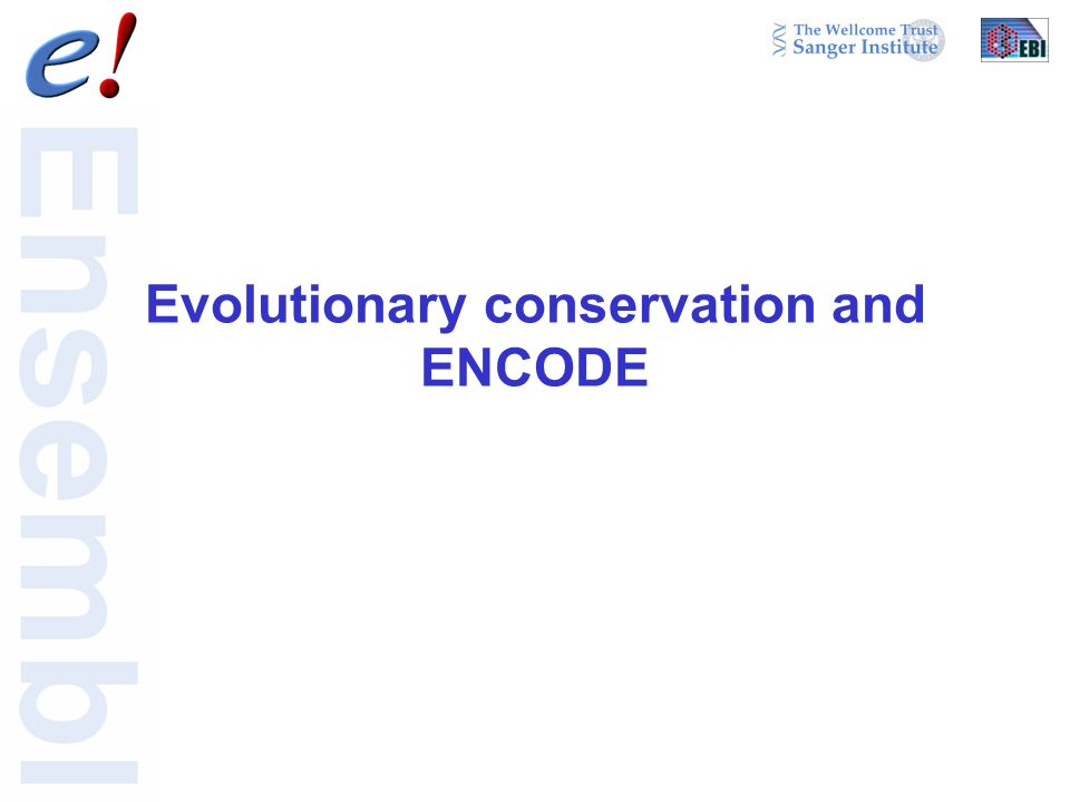 Evolutionary conservation and ENCODE