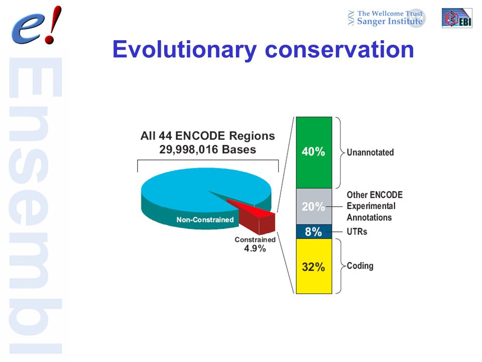 Evolutionary conservation