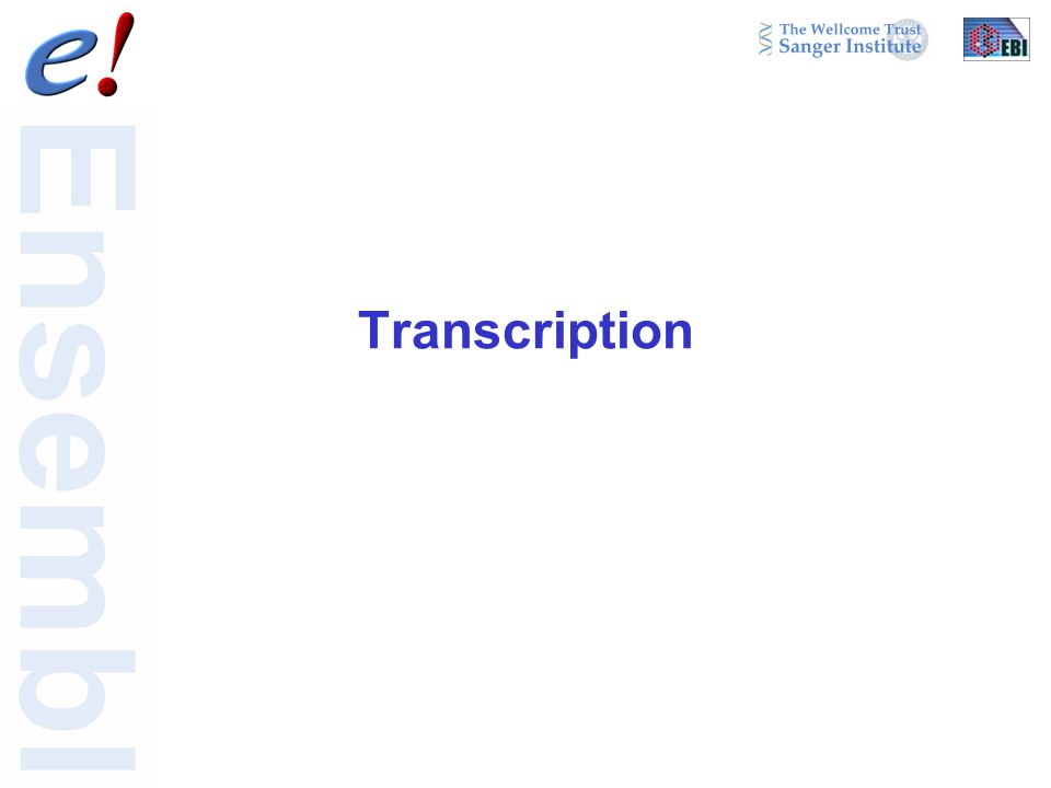 Transcription