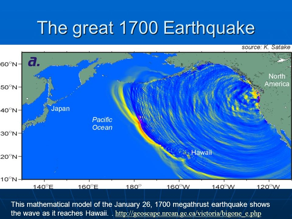 The great 1700 Earthquake This mathematical model of the January 26, 1700 megathrust earthquake shows the wave as it reaches Hawaii.. http://geoscape.