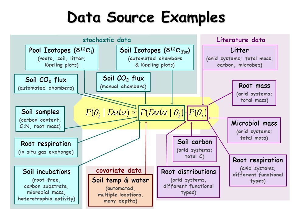 stochastic dataLiterature data Data Source Examples Soil Isotopes ( δ 13 C Tot ) (automated chambers & Keeling plots) Soil CO 2 flux (manual chambers)