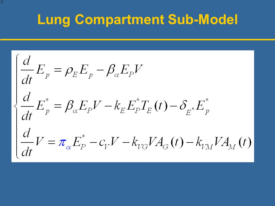 Lung Compartment Sub-Model