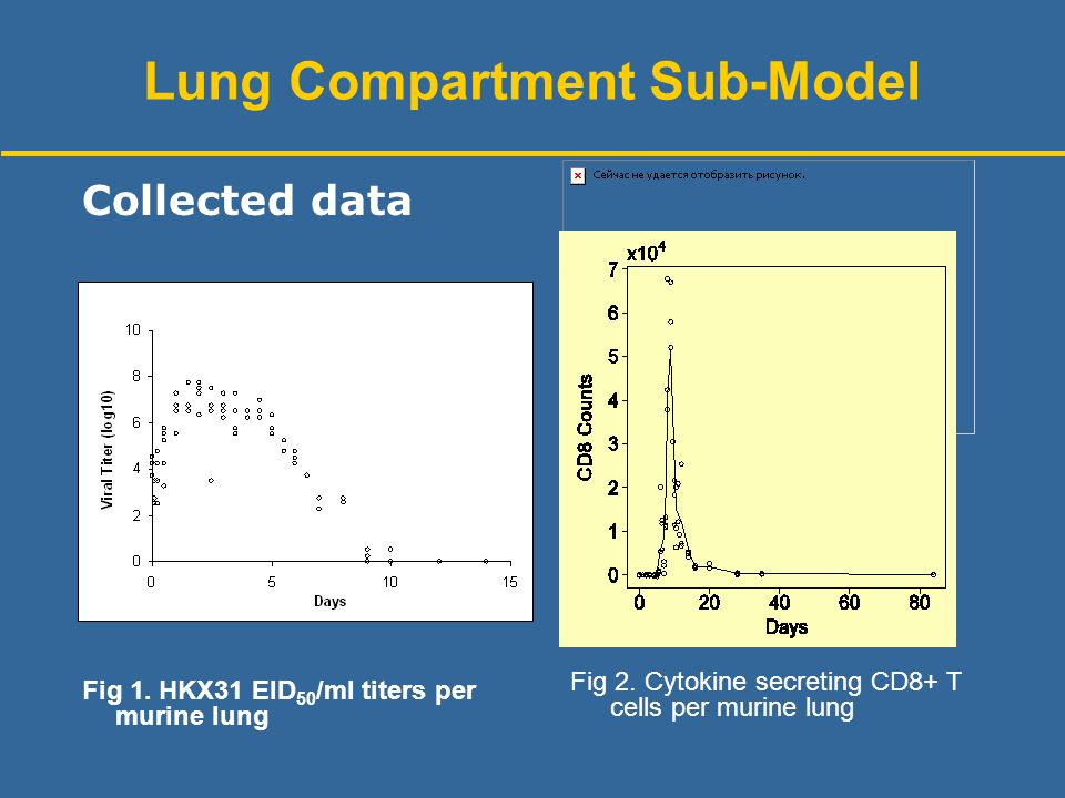 Fig 1. HKX31 EID 50 /ml titers per murine lung Collected data Fig 2.