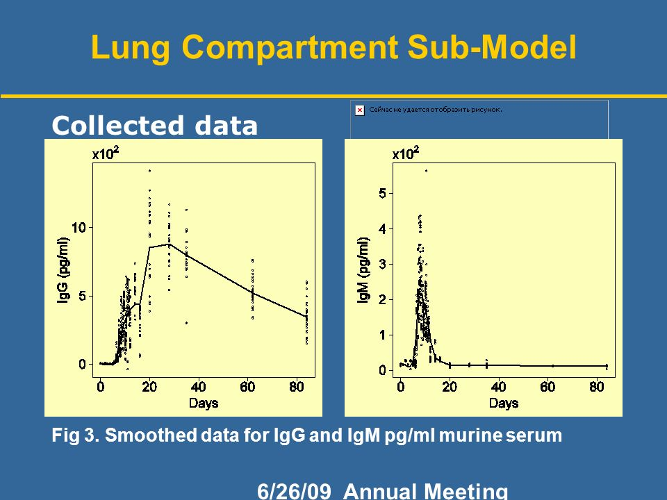 6/26/09 Annual Meeting Lung Compartment Sub-Model Fig 3.