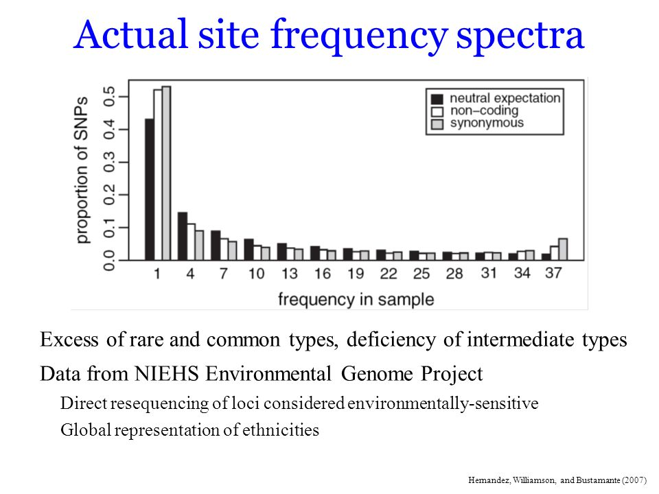 Actual site frequency spectra Excess of rare and common types, deficiency of intermediate types Data from NIEHS Environmental Genome Project Direct re
