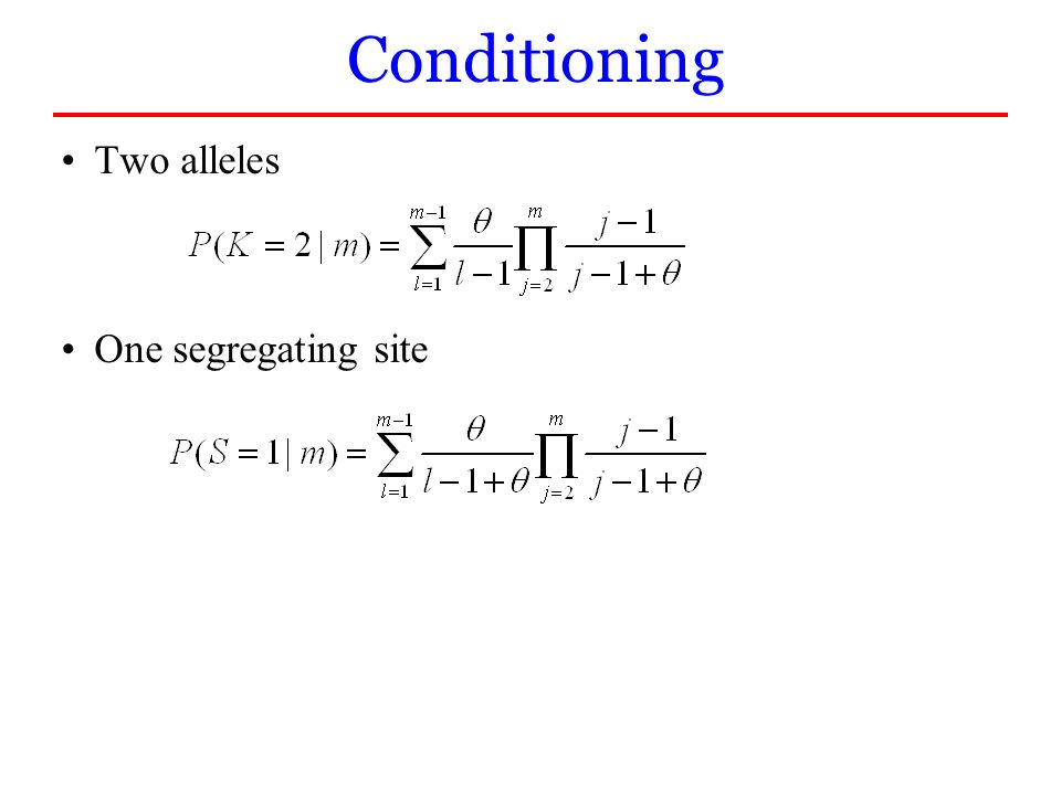 Two alleles One segregating site Conditioning