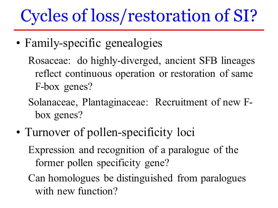 Family-specific genealogies Rosaceae: do highly-diverged, ancient SFB lineages reflect continuous operation or restoration of same F-box genes? Solana
