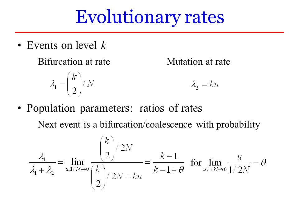 Events on level k Bifurcation at rateMutation at rate Population parameters: ratios of rates Next event is a bifurcation/coalescence with probability