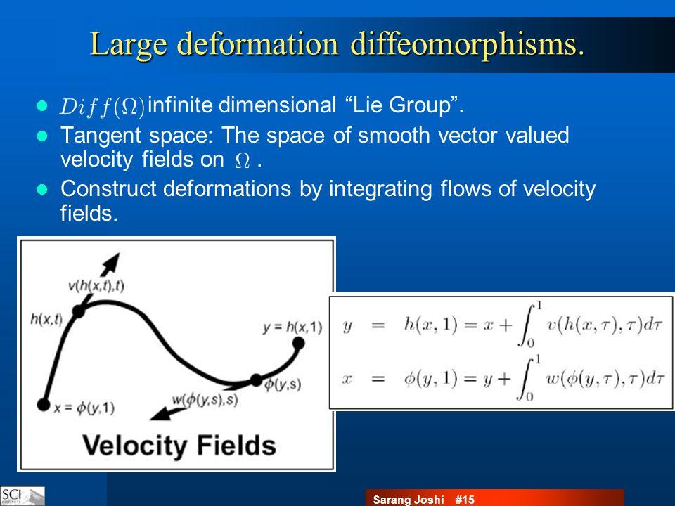 Sarang Joshi #15 Large deformation diffeomorphisms.