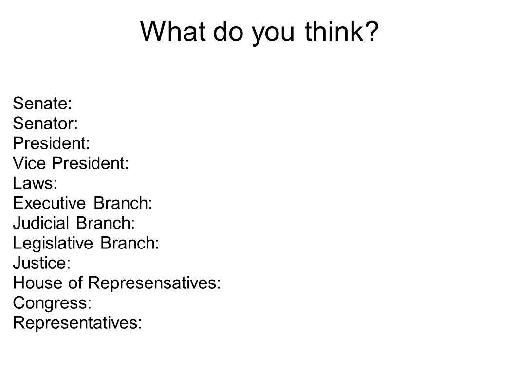 What do you think? Senate: Senator: President: Vice President: Laws: Executive Branch: Judicial Branch: Legislative Branch: Justice: House of Represen