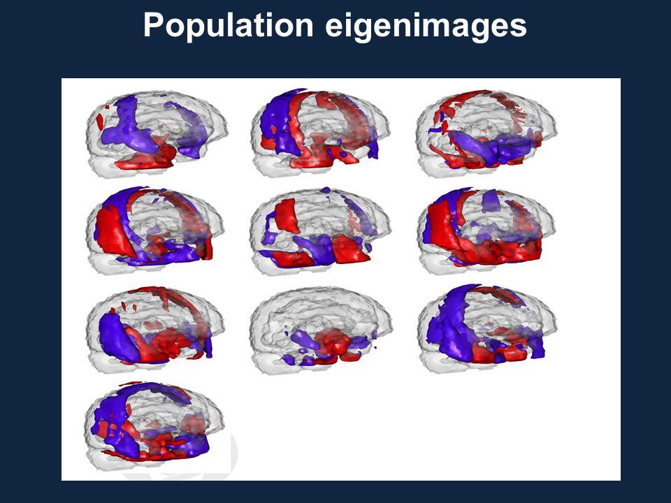 Population eigenimages