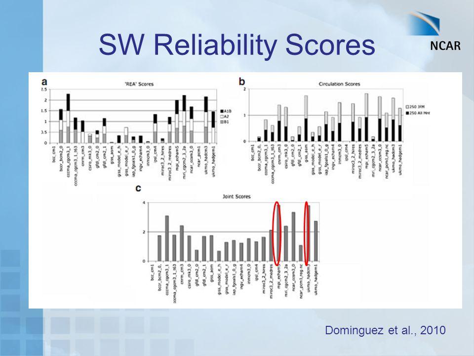SW Reliability Scores Dominguez et al., 2010