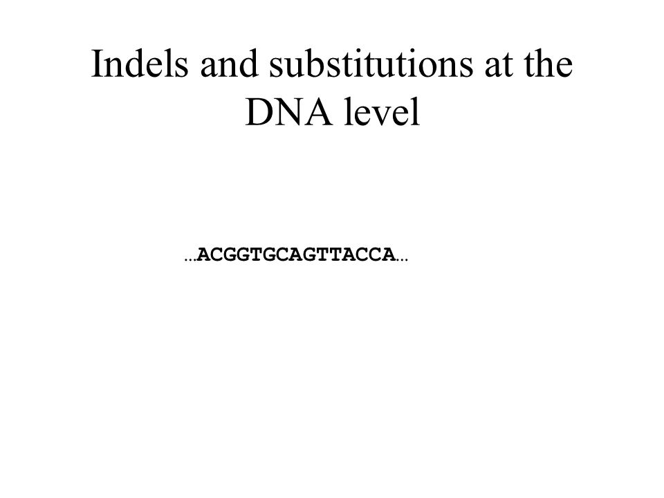 Indels and substitutions at the DNA level …ACGGTGCAGTTACCA… MutationDeletion