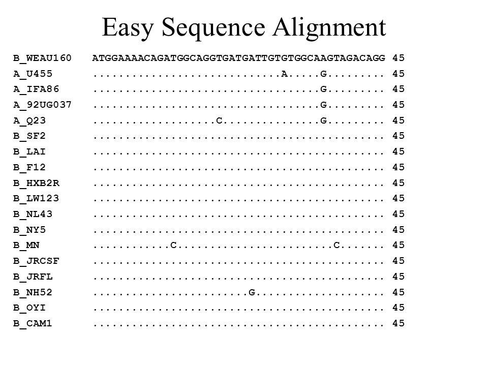 Easy Sequence Alignment B_WEAU160 ATGGAAAACAGATGGCAGGTGATGATTGTGTGGCAAGTAGACAGG 45 A_U455.............................A.....G......... 45 A_IFA86.....
