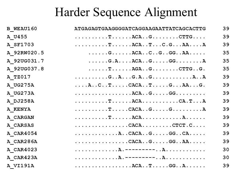 Harder Sequence Alignment B_WEAU160 ATGAGAGTGAAGGGGATCAGGAAGAATTATCAGCACTTG 39 A_U455..........T......ACA..G........CTTG.... 39 A_SF1703..........T...
