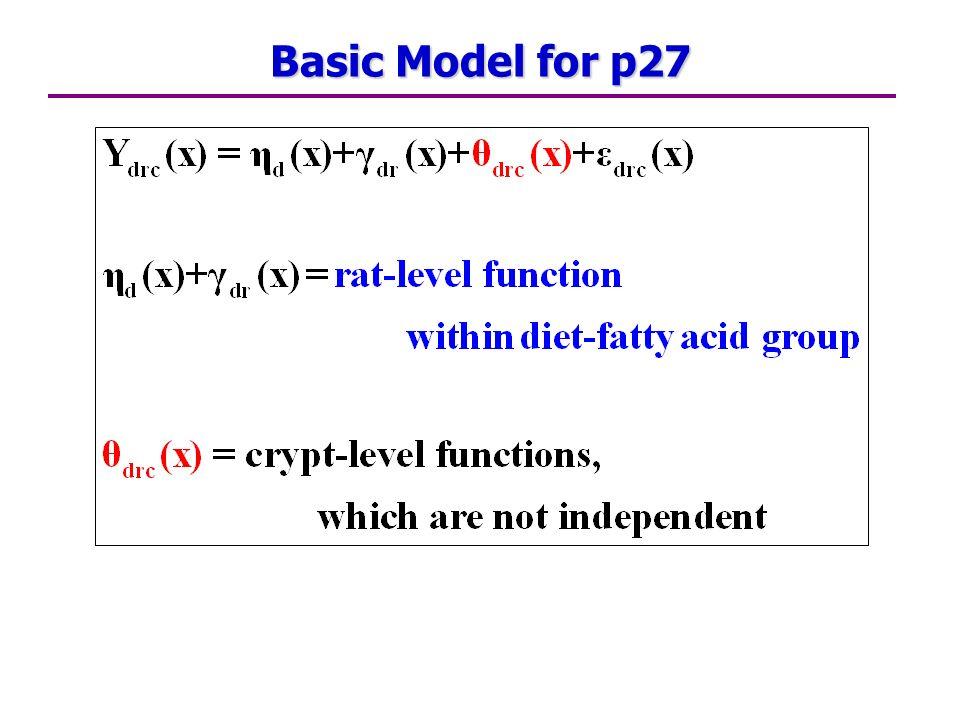 Basic Model for p27