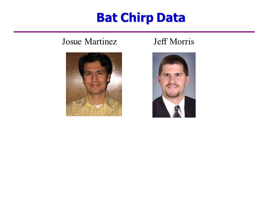 Bat Chirp Data Josue Martinez Jeff Morris