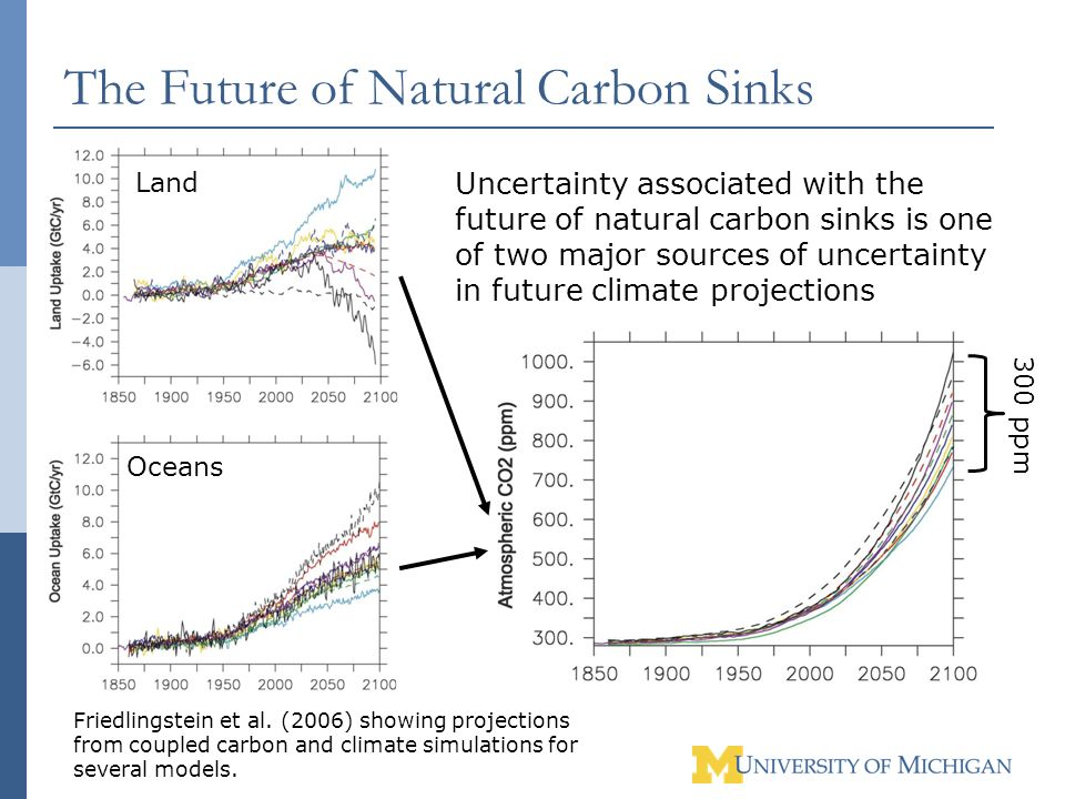 The Future of Natural Carbon Sinks Friedlingstein et al. (2006) showing projections from coupled carbon and climate simulations for several models. Un