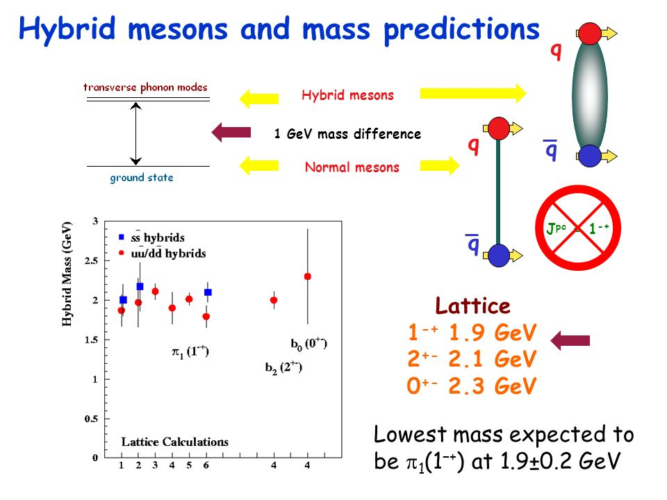 Hybrid mesons Normal mesons 1 GeV mass difference Hybrid mesons and mass predictions J pc = 1 -+ q q q q Lattice 1 -+ 1.9 GeV 2 +- 2.1 GeV 0 +- 2.3 GeV Lowest mass expected to be 1 (1+ ) at 1.9±0.2 GeV