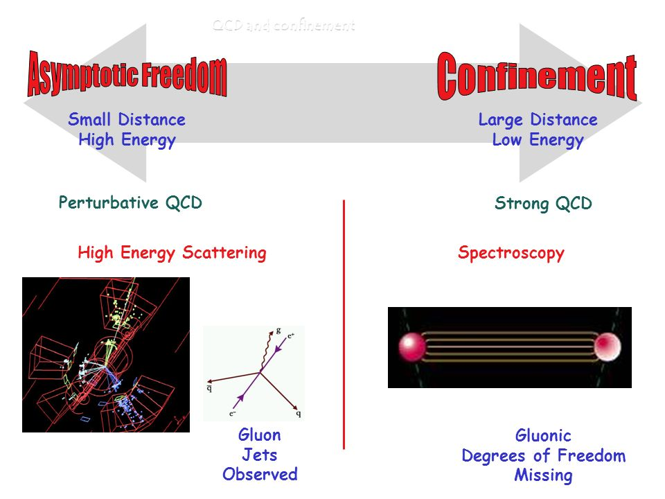 QCD and confinement Large Distance Low Energy Small Distance High Energy Perturbative QCD Strong QCD High Energy Scattering Gluon Jets Observed Spectroscopy Gluonic Degrees of Freedom Missing