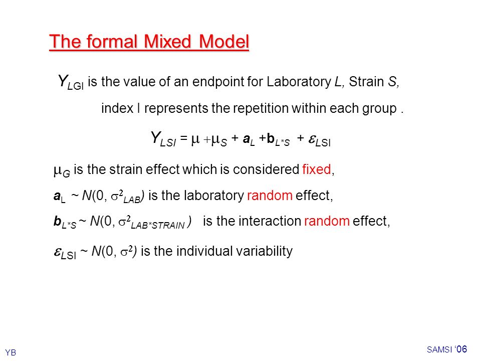 YB SAMSI 06 The formal Mixed Model Y LGI is the value of an endpoint for Laboratory L, Strain S, index I represents the repetition within each group.