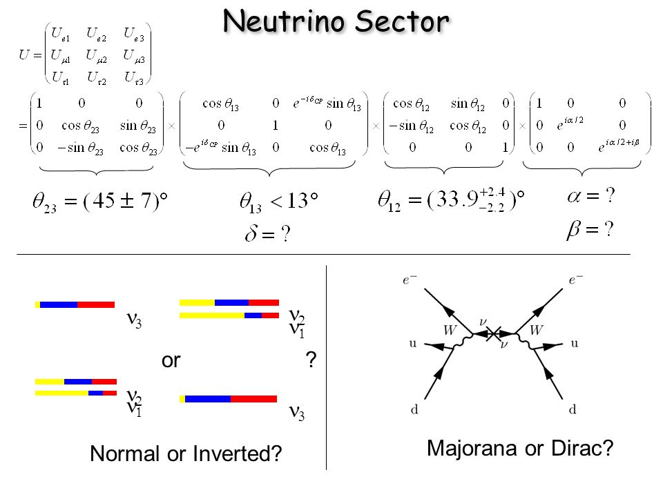 Neutrino Sector or Normal or Inverted Majorana or Dirac