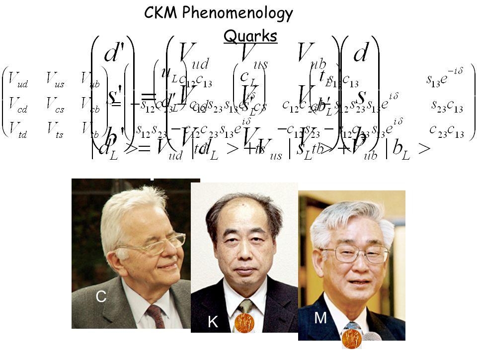 M C K CKM Phenomenology Quarks