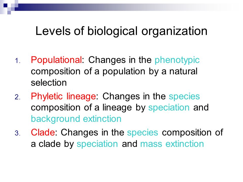 Levels of biological organization 1. Populational: Changes in the phenotypic composition of a population by a natural selection 2. Phyletic lineage: C
