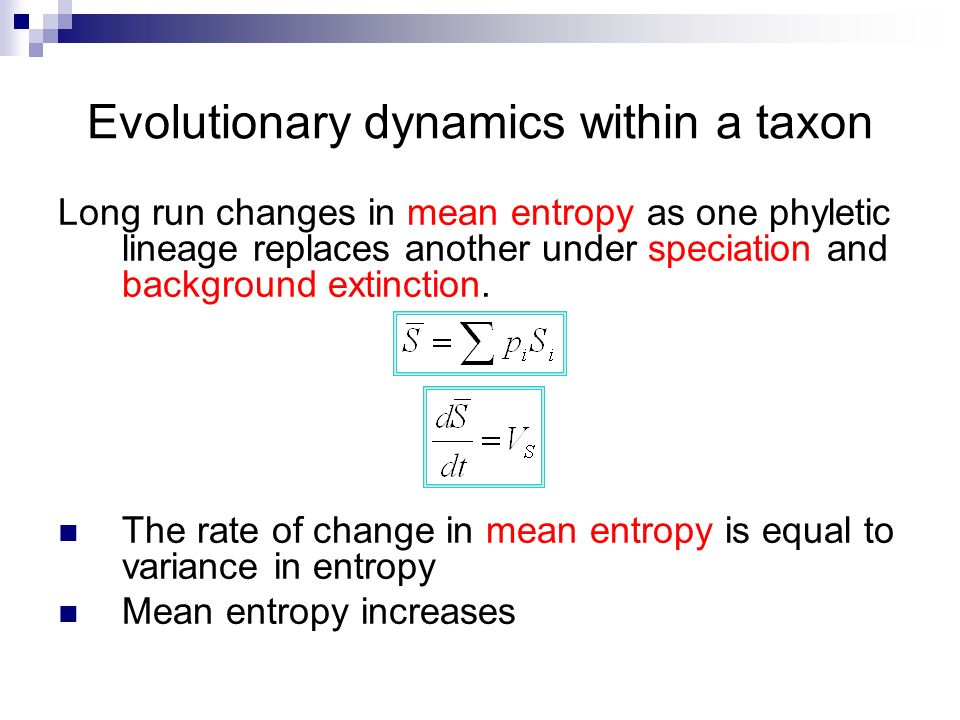 Evolutionary dynamics within a taxon Long run changes in mean entropy as one phyletic lineage replaces another under speciation and background extinct