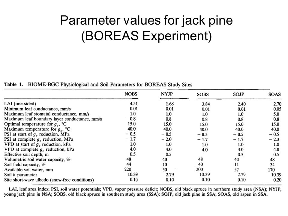 Parameter values for jack pine (BOREAS Experiment)