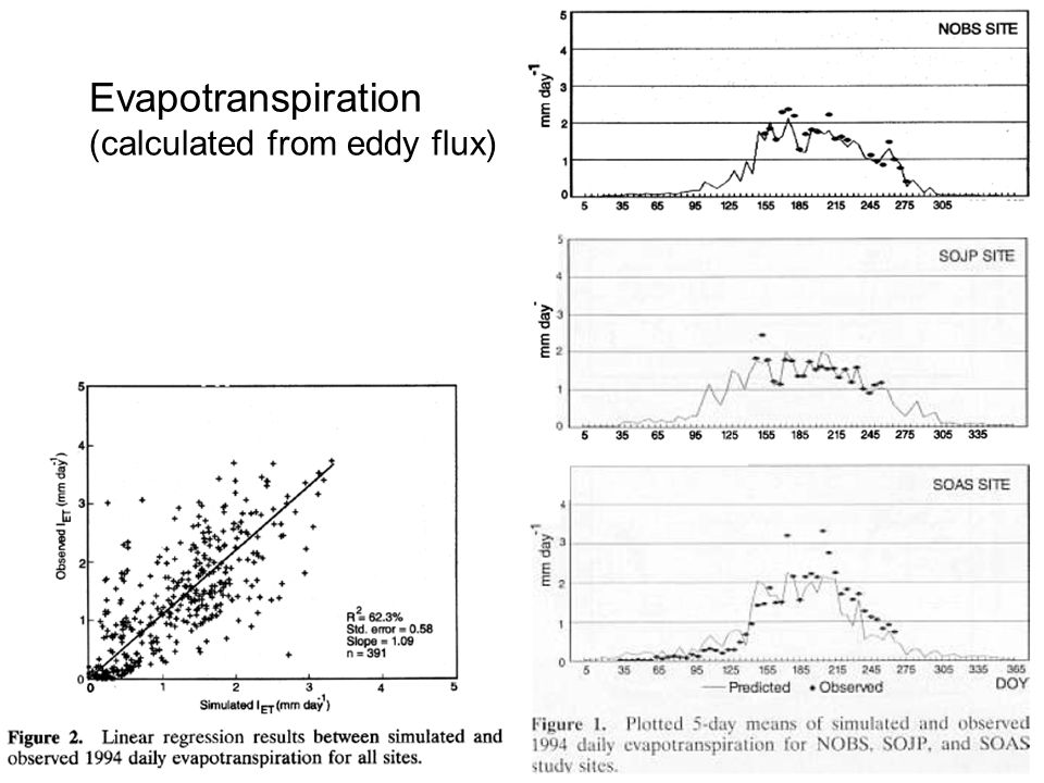 Evapotranspiration (calculated from eddy flux)