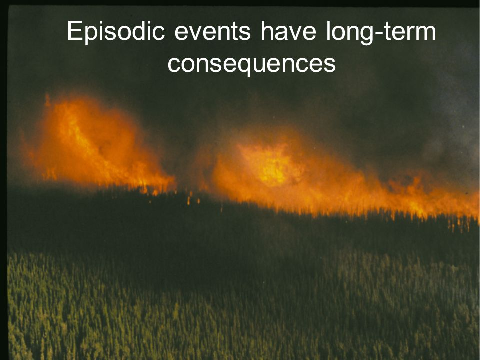 Episodic events have long-term consequences