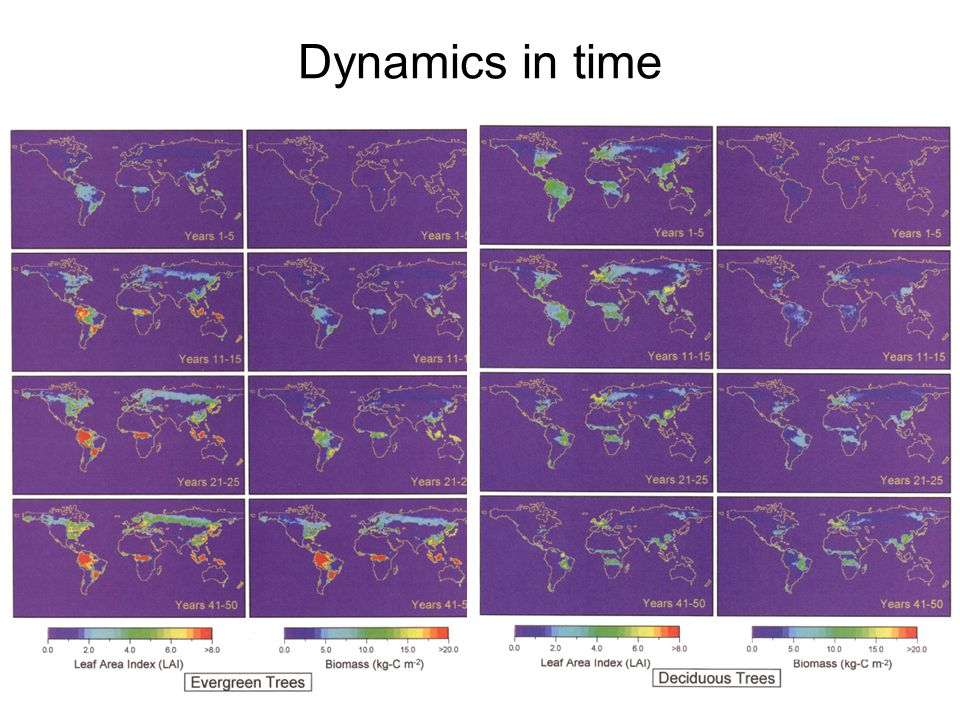 Dynamics in time