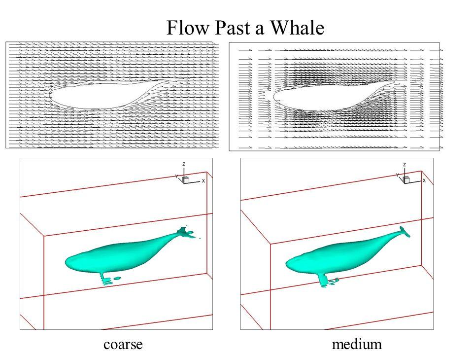 Flow Past a Whale coarsemedium