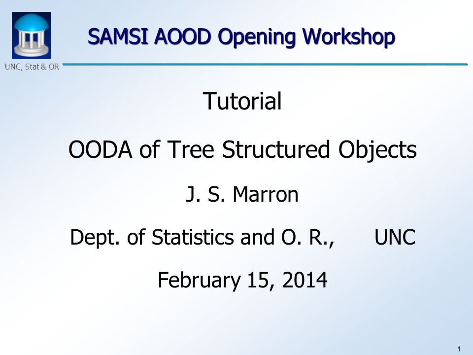 1 UNC, Stat & OR SAMSI AOOD Opening Workshop Tutorial OODA of Tree Structured Objects J. S. Marron Dept. of Statistics and O. R., UNC February 15, 201