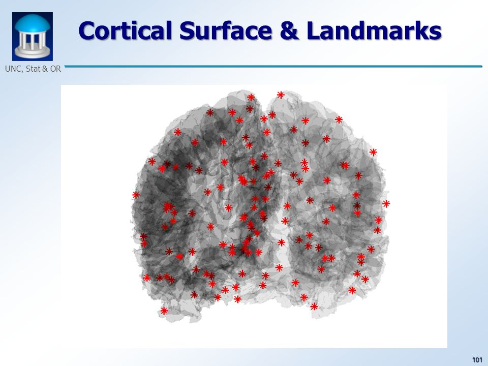 101 UNC, Stat & OR Cortical Surface & Landmarks
