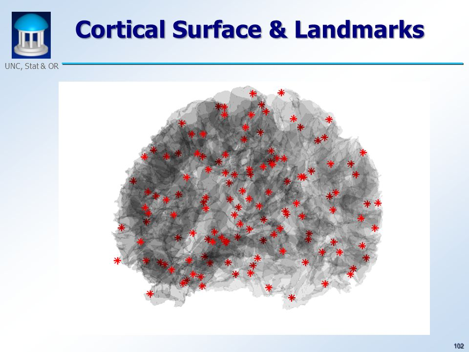 102 UNC, Stat & OR Cortical Surface & Landmarks