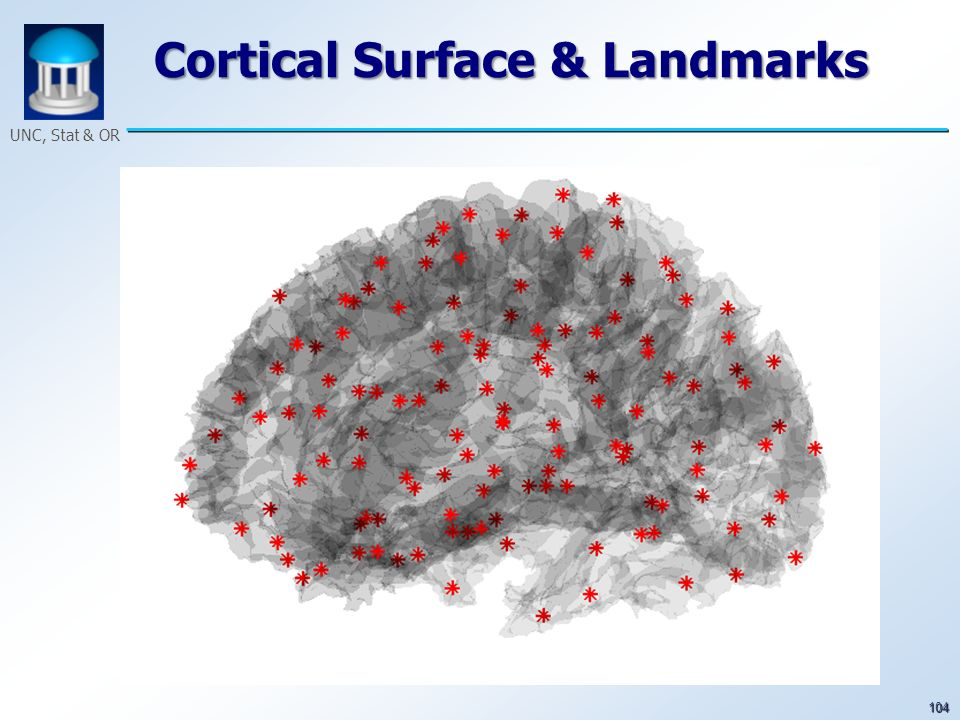 104 UNC, Stat & OR Cortical Surface & Landmarks