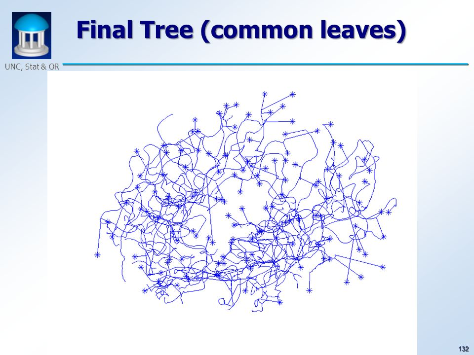 132 UNC, Stat & OR Final Tree (common leaves)