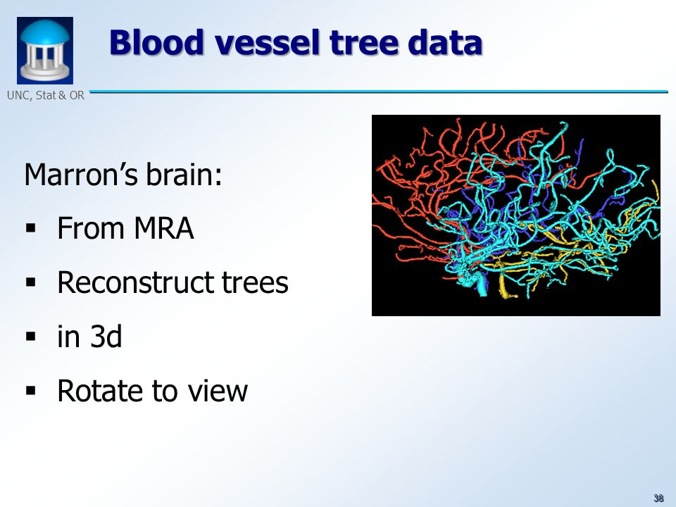 38 UNC, Stat & OR Blood vessel tree data Marrons brain: From MRA Reconstruct trees in 3d Rotate to view