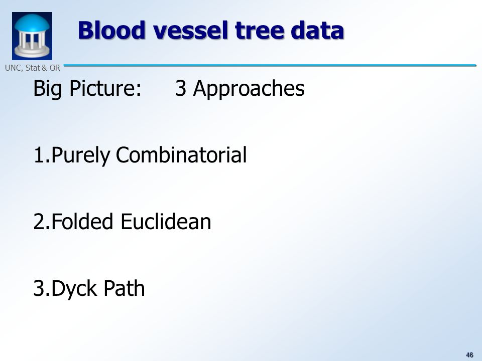 46 UNC, Stat & OR Blood vessel tree data Big Picture: 3 Approaches 1.Purely Combinatorial 2.Folded Euclidean 3.Dyck Path