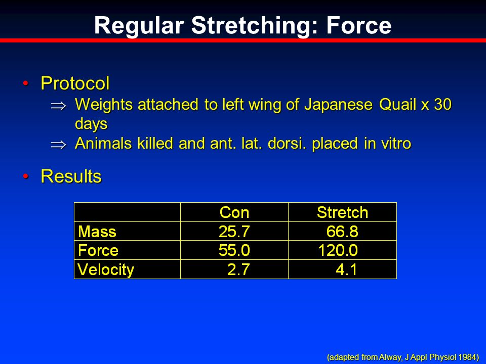 Regular Stretching: Force ProtocolProtocol Weights attached to left wing of Japanese Quail x 30 days Weights attached to left wing of Japanese Quail x 30 days Animals killed and ant.