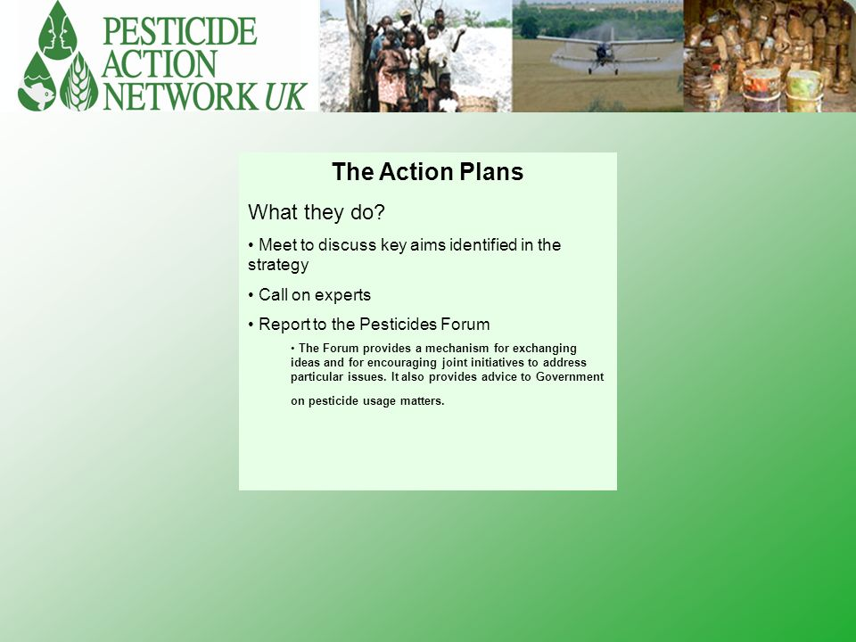 The Action Plans What they do.