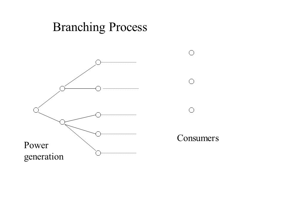Power generation Consumers Branching Process
